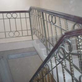 Консерватория 2009г